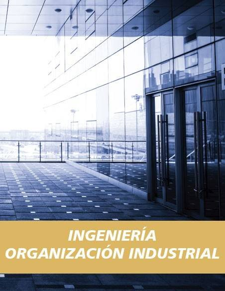 Ingeniería Organización Industrial
