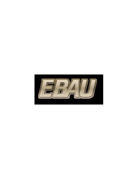 Prueba Acceso a la Universidad - EBAU